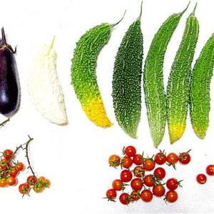 s-【家庭菜園】トマト・ゴーヤー・ナスビなどの成長記録【12週間後】25